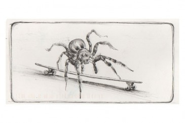 spiderpostcard
